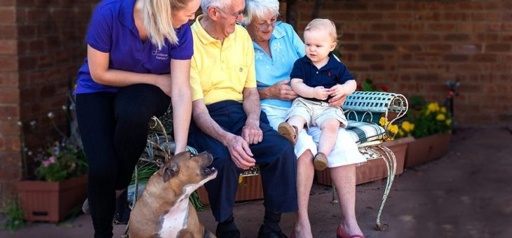 Read more about the article Private in-home care – what services are available?